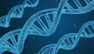 NMC Biomedical Research Los Alamos