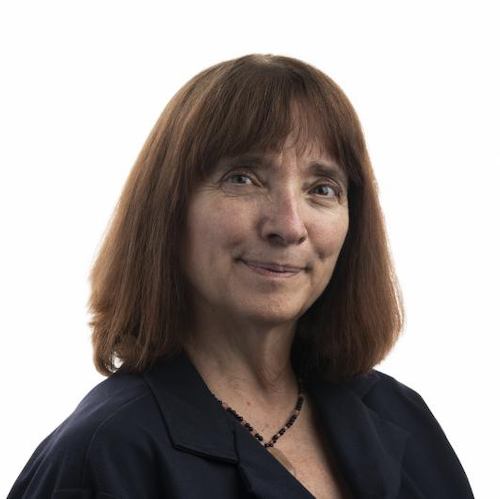 Bette Korber speaks at AIDS Research Seminar